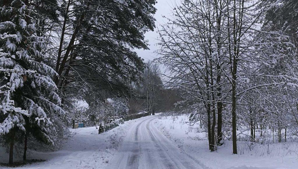 Kelias į sodus žiemą